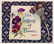 Did you know there was such a thing as the language of flowers?